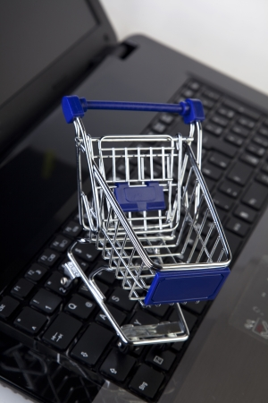 online shopping - shopping cart photo