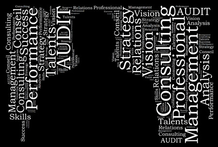 Audit consulting word cloud