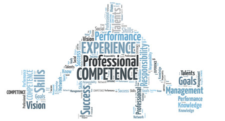 Professional competence and experience