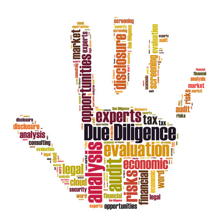 Due Diligence woord cloud