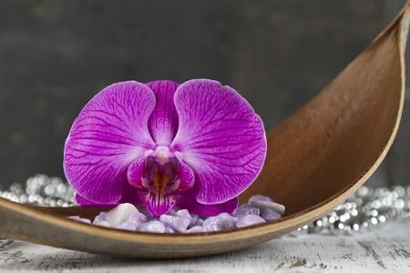 esoterismo: concepto de relajación con la orquídea rosada Foto de archivo