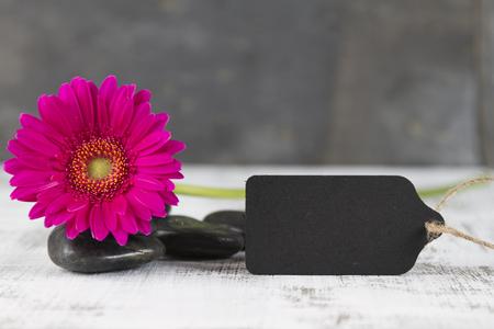 esoterismo: concepto de calidad de vida con gerbera rosa y muestra vacía