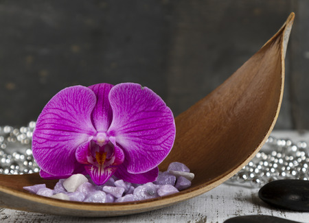 hot stones: life balance concept with orchid and hot stones Stock Photo