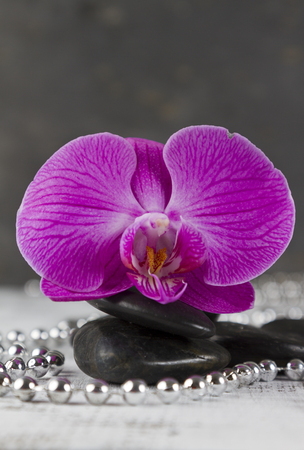 hot stones: wellbeing concept with hot stones and pink orchid Stock Photo
