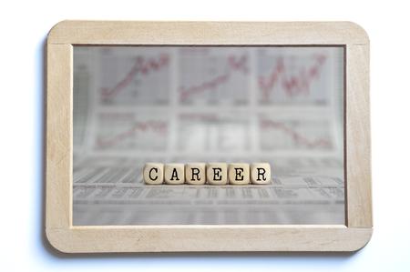 job qualifications: career
