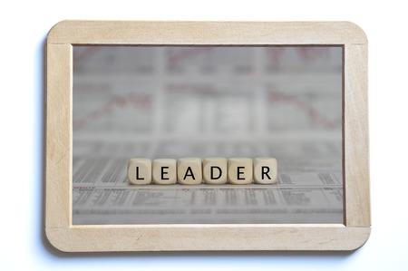 tour operator: Leader
