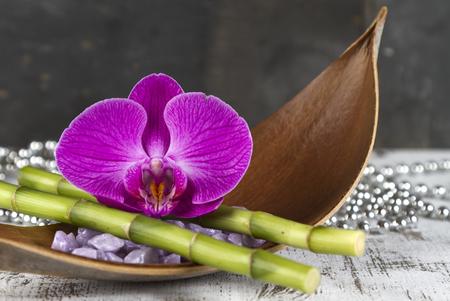 esoterismo: concepto de bienestar con la orquídea y el bambú