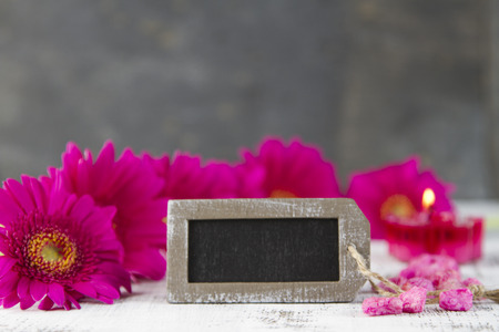 timeout: timeout concept with pink gerbera and empty sign Stock Photo