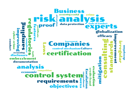 control fraud: risk analysis word cloud shaped as a stop sign