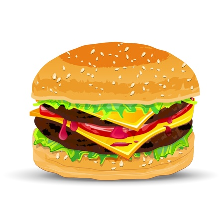 Hamburger with cheese illustration  Vector