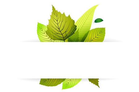 Abstract spring background with leaves and place for text Stock Vector - 12488739