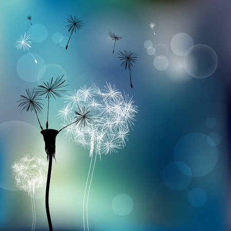 Abstract faded dandelions Vector