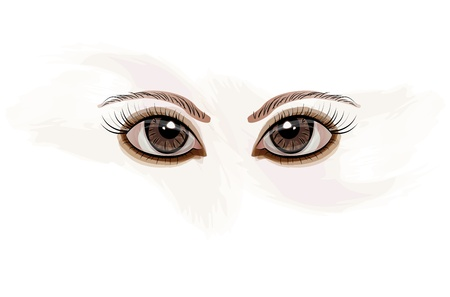 brown eyes: Abstract girl s brown eyes  Illustration