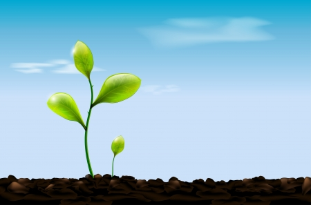 seedling growing: Green sprout, soil and blue sky with clouds - vector illustration