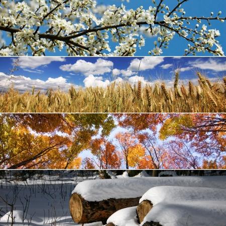 estaciones del a�o: Cuatro temporadas de primavera, verano, oto�o e invierno banners horizontales Foto de archivo