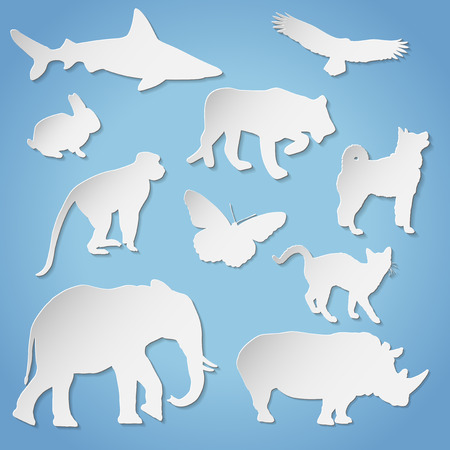 dog shark: Paper animal silhouettes with transparent shadow for any background - vector illustration