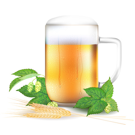 brewery  hops: Glass of beer, hops and barley - isolated on white background. Vector illustration. Illustration