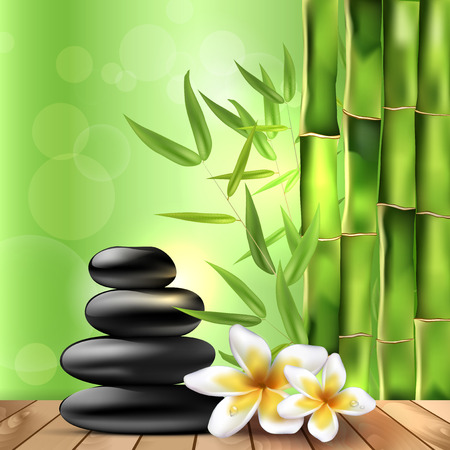 Bamboo, dewy frangipani flowers and stones on the wood - spa background. Vector illustration. Vector