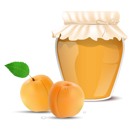 apricot jam: Apricot jam in a jar and fresh apricots - isolated on white background. Vector illustration.
