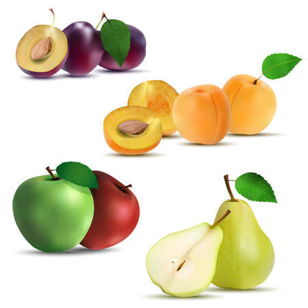 apricot: Set of fruits - plum, apricot, apple and pear. Isolated on white background - vector illlustration. Illustration