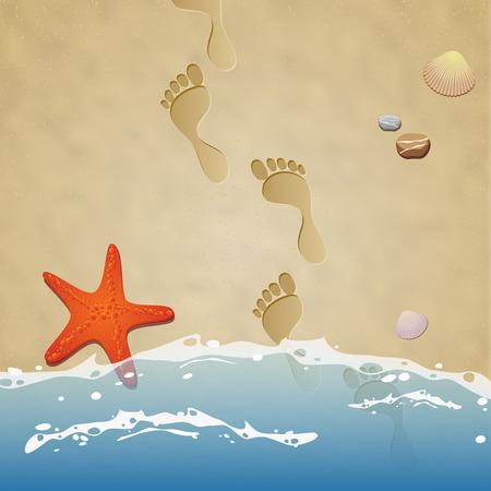 huellas: Costa con las huellas en la arena, agua, piedras, estrellas de mar y conchas marinas - ilustración vectorial