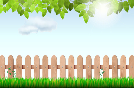 Wooden fence, grass, tree branch and sky with sun and clouds - vector illustration