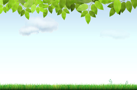 tree grass: Grass, tree branch and blue sky with clouds - vector illustration Illustration