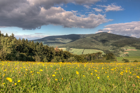 czech: Summer mountain scenery with flowering meadow and blue sky with white clouds - White Carpathian Mountains, Czech-Slovak border, Europe
