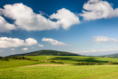 grassfield: Beautiful summer countryside with green pasture and blue sky with clouds - Czech Republic, Europe