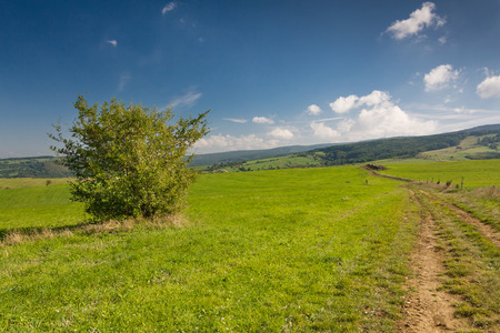 czech: Summer countryside with road through green pasture and blue sky - Czech Republic, Europe