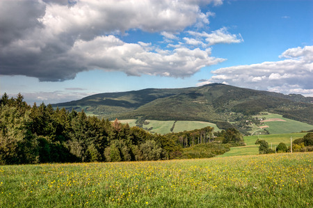 czech: Amazing summer landscape with flowering meadow and blue sky with white clouds - White Carpathian Mountains, Czech-Slovak border, Europe