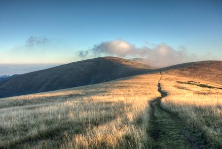 dia soleado: Camino a través de la salida del sol en el canto herboso de la montaña - Gran Parque Nacional Fatra, Eslovaquia, Europa Foto de archivo