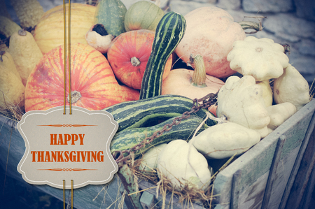 happy thanksgiving: Pumpkins with Happy Thanksgiving paper tag in retro colors - holiday card Stock Photo