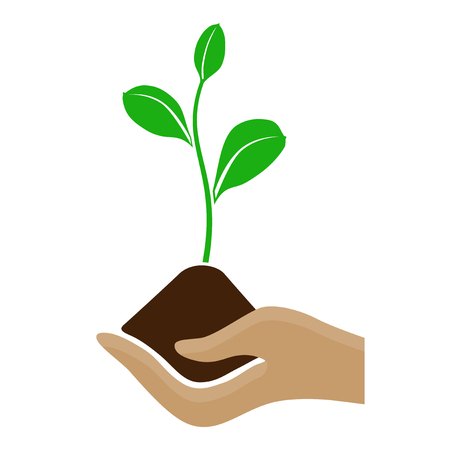 Stylized hand holding a pile of dirt and growing plant - isolated on white background. Vector illustration.