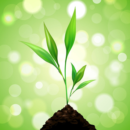 beginnings: Plant grows from a pile of dirt on green background with blurred bokeh. Vector illustration.
