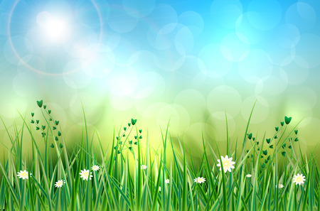 grass flowers: Spring background with grass, flowers and blurred background - vector illustration