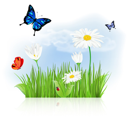 Nature spring or summer background with grass, flowers and butterflies - vector illustration Illustration