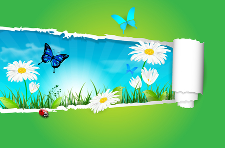 flower ladybug: Nature spring or summer background with ripped paper - illustration Stock Photo