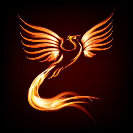bird: Phoenix bird fire silhouette - vector illustration