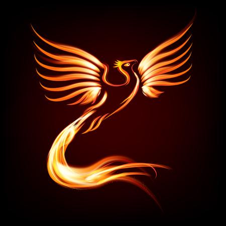 phoenix bird: Phoenix bird fire silhouette - vector illustration