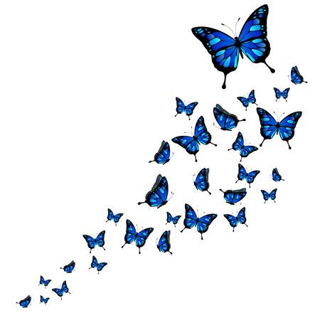 Multitud de las mariposas abstractas sobre fondo blanco - ilustración vectorial Ilustración de vector