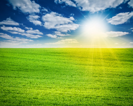 blue green landscape: Amazing spring or summer landscape with green field, sun and blue sky with white clouds