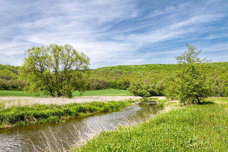 Spring landscape with green meadow, river, trees and blue sky with white clouds. Oslava river, Czech Republic, Europe. Reklamní fotografie