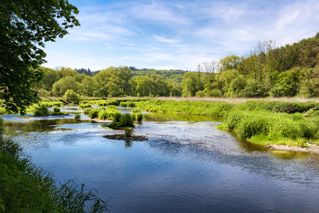 Spring landscape with river, trees and blue sky with white clouds. Oslava river, Czech Republic, Europe. Reklamní fotografie