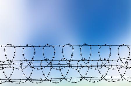 青空有刺鉄線のイラスト。有刺鉄線でぼやけた空の背景を抽象化します。有刺鉄線 - 青い空の背景のシルエット。有刺鉄線の上にテキストを配置し  イラスト・ベクター素材