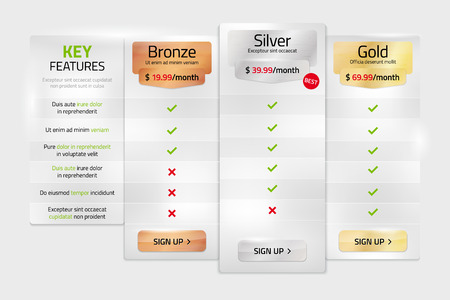 gold silver: Pricing plans in metal style for websites and applications - template with sample text in separate layer. Vector illustration.