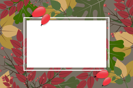 rose hips: Blank rectangle frame on autumnal background with leaves and rose hips - place for your text. Vector illustration. Illustration