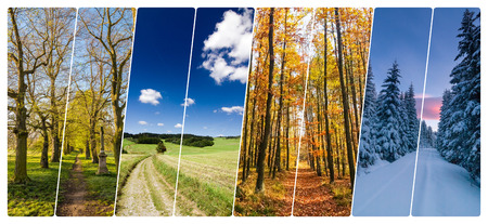 Four season collage from vertical banners with roads in landscape. All used photos belong to me. Reklamní fotografie - 66206484