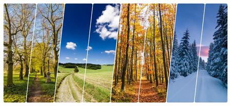Quattro stagioni collage da banner verticale con le strade nel paesaggio. Tutte le foto utilizzate appartengono a me. Archivio Fotografico