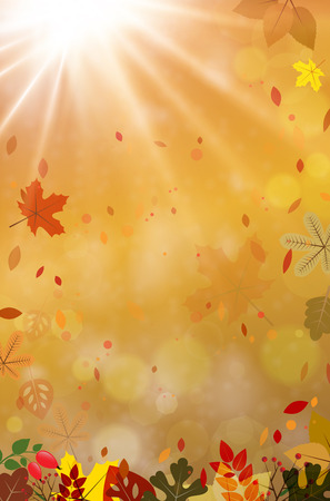 sunbeam background: Abstract autumn background with sun beams, autumn leaves and blurred bokeh - place for your text. Vector illustration. Illustration